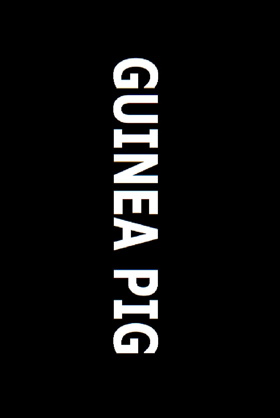 Casting GUINEA PIG, a narrative film